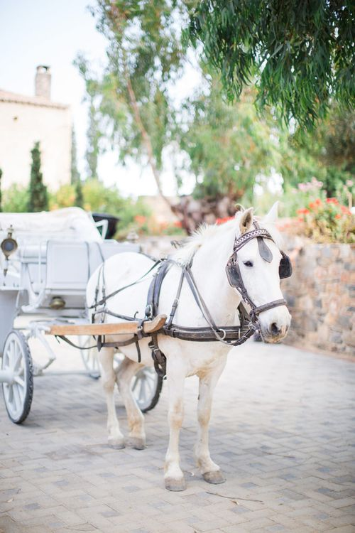 Horse & Carriage   Intimate Outdoor Destination Wedding at Kinsterna Hotel & Spa in Greece   Cecelina Photography