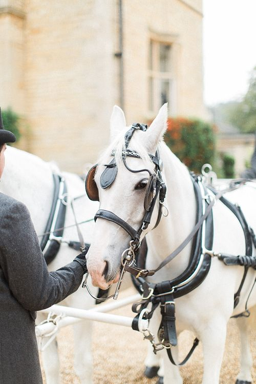 Traditional Horse and Carriage | Jacob & Pauline Photography | Pretty in White Films