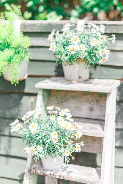Plant Pots on Step Ladders | Rustic Wedding Decor | White Stag Wedding Photography
