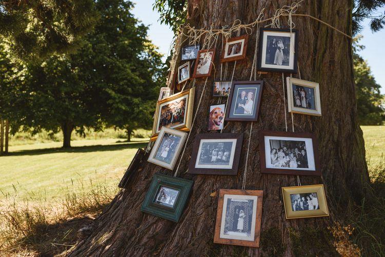Family Portraits Family Tree Wedding Decor