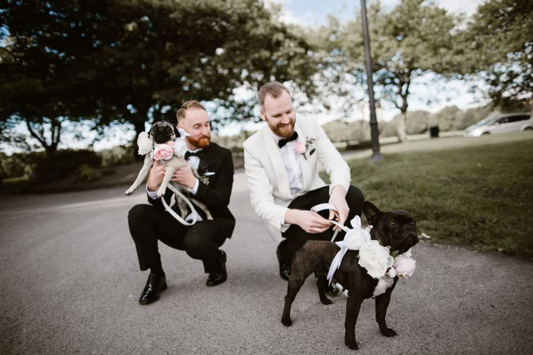 Groom & Groom in Tuxedos with Pugs in Floral Collars