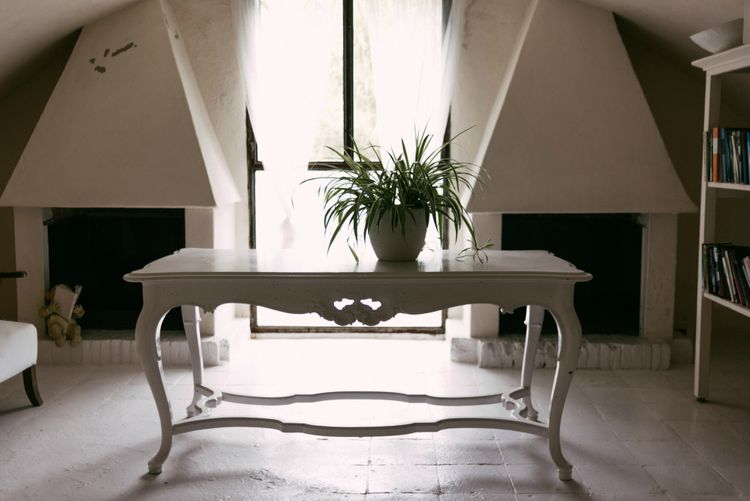 White Table & Plant