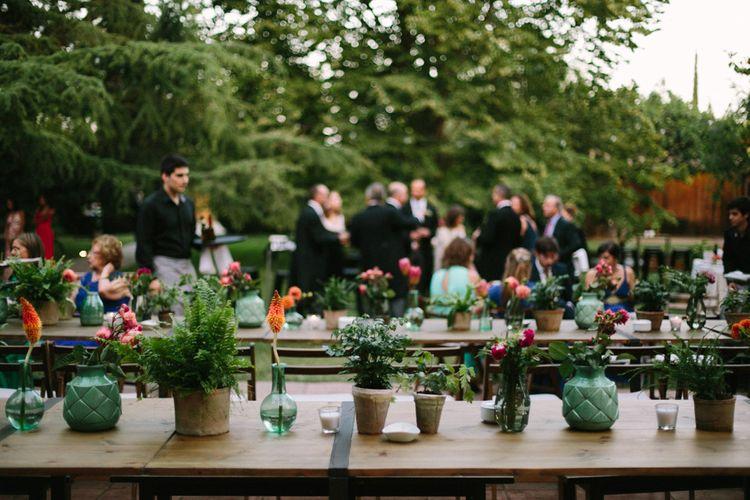 Vibrant Plant Pot Tabel Centrepieces