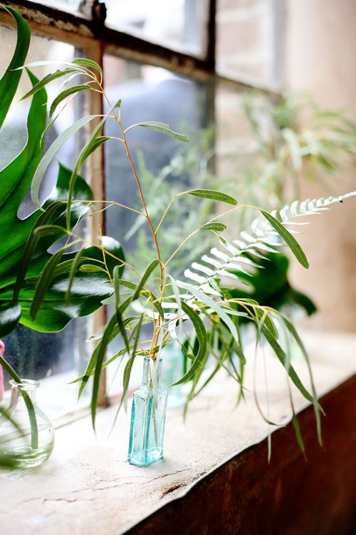 Botanical Greenery Foliage Wedding Decor | Dasha Caffrey Photography