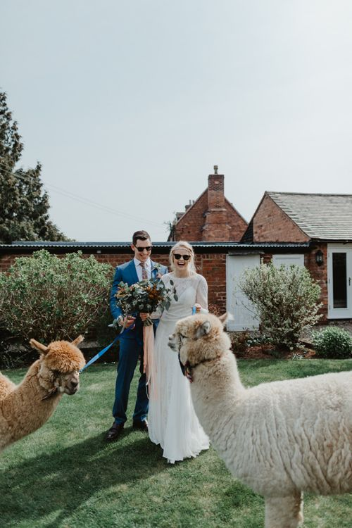 Bride in Lace Allure Bridals Wedding Dress and Groom in Blue Hugo Boss Suit  Holding Alpacas Lead