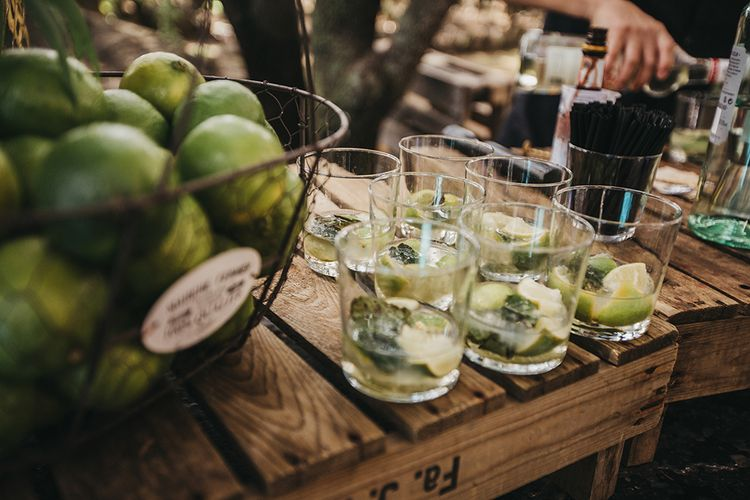 Lemon, Lime and Mint Mixers for Wedding Reception Drinks