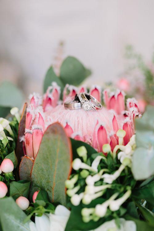Protea Wedding Flower | DIY Country Wedding at Warborne Farm, Lymington | Camilla Arnhold Photography