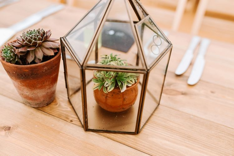 Terrarium Potted Plant Decor | Fun Stretch Tent Reception on Primary School Field in Sheffield |  Tub of Jelly Photography