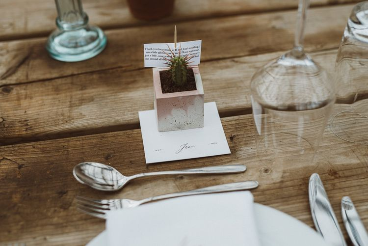 Potted Cactus Wedding Favour