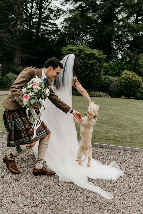 Pet dog jumping up at the bride and groom