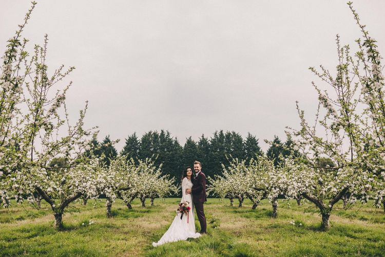 Groom in Burgundy Suit and Bride in Lace Wedding Dress Standing in an Orchard