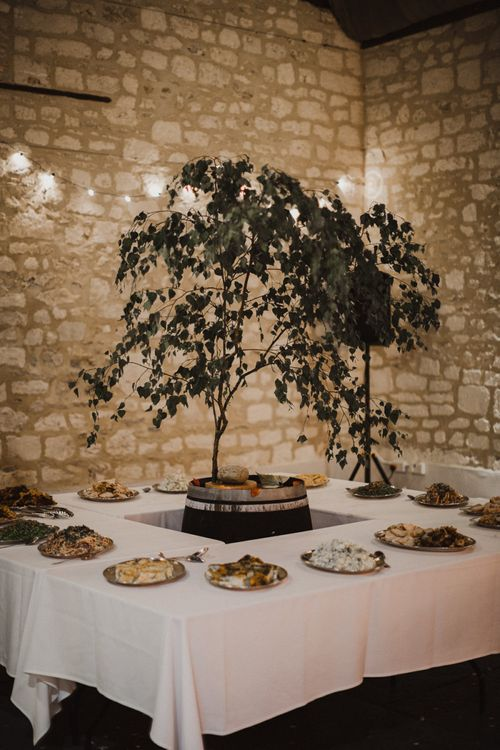 Grazing Table with Plant Centrepiece