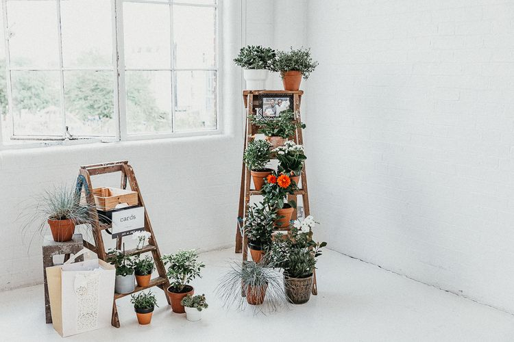 Industrial Ladder with Potted Plants | Whitewashed Walls | Cards Box | Same Sex Wedding with Industrial Styling at Wimborne House | Marmelo Photography