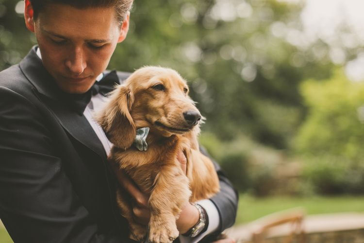 Groom in Tuxedo Holding His Pet Long-Haired Dachshund