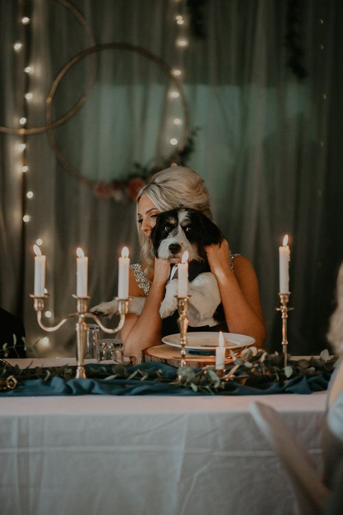 Pets at wedding with Archie the dog and bride wearing embroidered veil