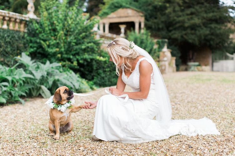 Bride in St Patrick La Sposa Wedding Dress with Her Pet Pug in a Floral Collar