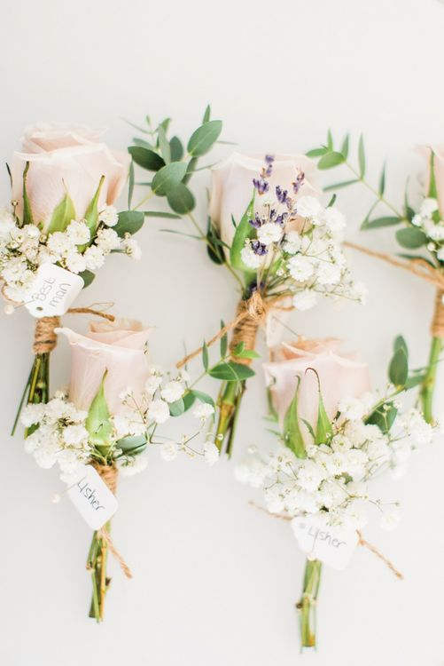 Buttonholes with Blush Roses and Gypsophila