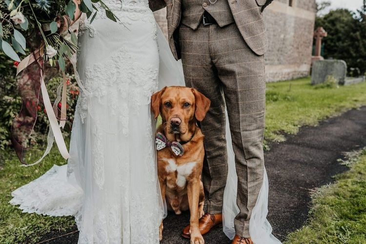 Pet down in bow tie standing next to the bride and groom