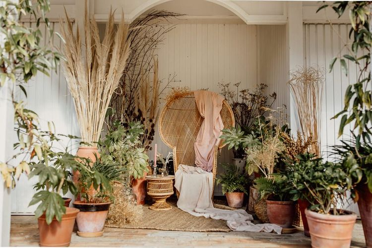 Botanical Plants, Pampas Grass and Wicker Peacock Chair Chill Out Area