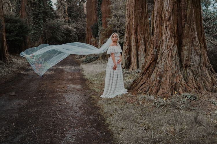 Bride in the Woods with Billowing Veil and Lace Wedding Dress