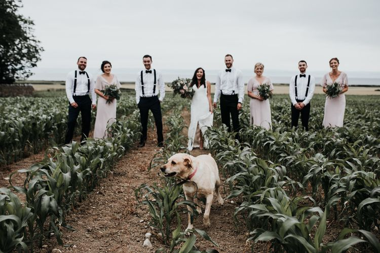Wedding party portraits  interrupted by dog