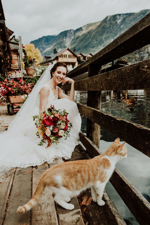 Bride Crouching Down in Her Lace Wedding Dress with a Ginger Cat