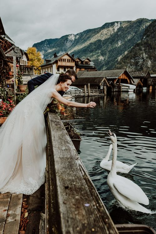 Bride and Groom Feeding The Swans in Hallstatt, Austria