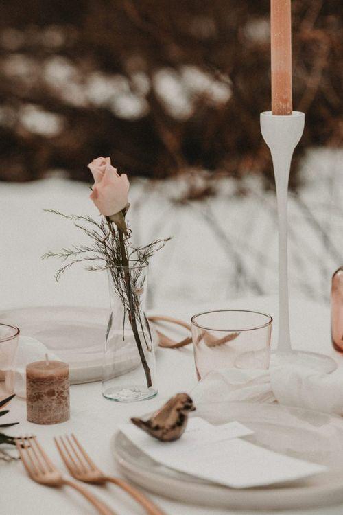 Single stem rose in vase
