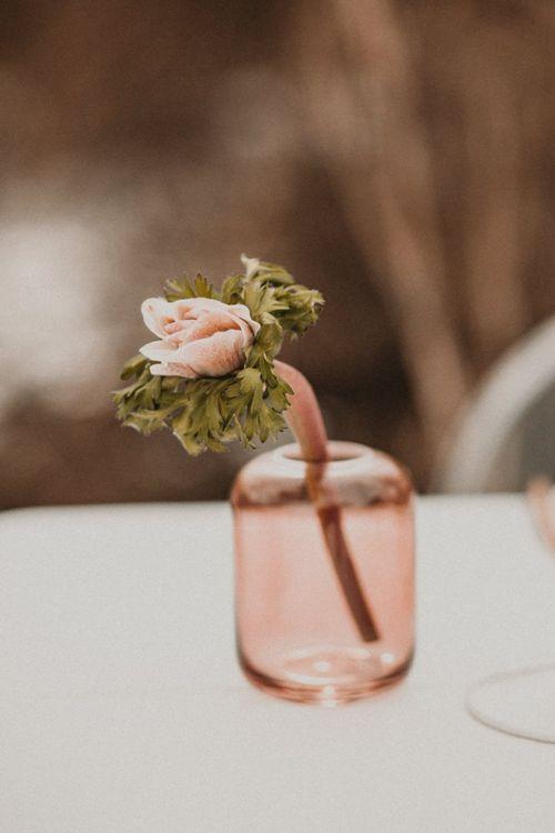 Single flower stem in blush pink pot