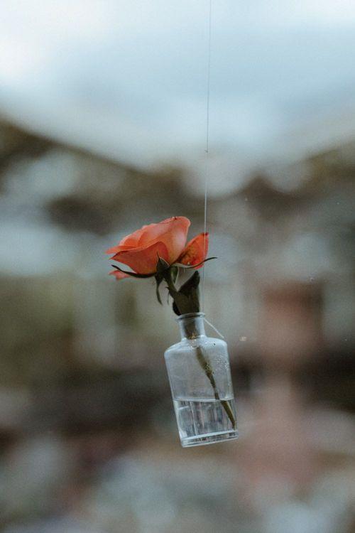Orange Flower Stem in Jar   Orange, White & Green Boho Wedding at Clifton Nurseries London    Olivia & Dan Photography