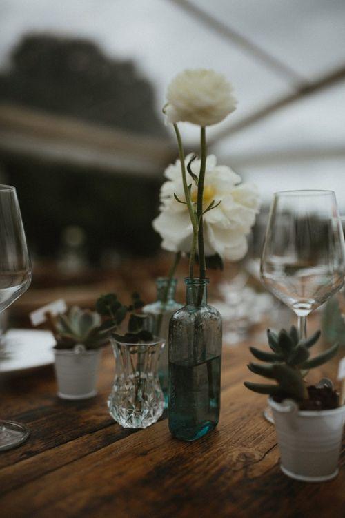 White Flowers in Bottles