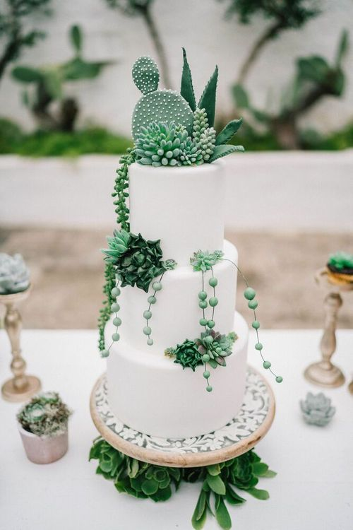 All White Wedding Cake Decorated with Green Succulents and Cactus Plants